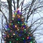32nd Annual Tree Lighting